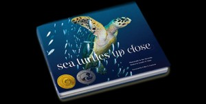 SeaTurtlesUpCloseSS