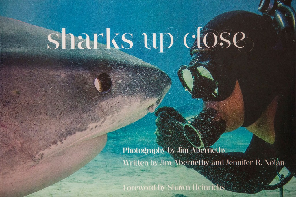 Sharks - Up Close (Hard Cover)